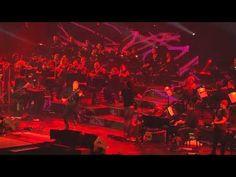 David Garrett - Bon Jovi - Thank You For Loving Me (Live)
