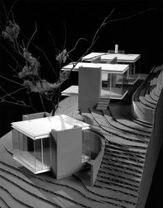 Modern Cabins   Tea Houses: three teas = three houses   Busyboo