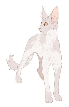 comm: curiouser and curiouser by DoctorCritical on DeviantArt - Ghost move cub in the night clan brother of ray cub son of pearl claw and leaf change - Warrior Cat Oc, Warrior Cats Fan Art, Warrior Cat Drawings, Animal Sketches, Animal Drawings, Cute Drawings, Cat Character, Character Design, Cat Reference