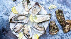 10 x oesters eten in Zeeland - Little Spoon