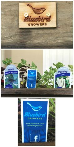 Product Review Bluebird Grower Product Review. Support local in Jacksonville.