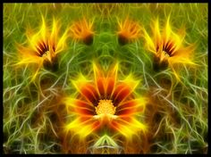 I love this effect.  ▲ ►burning flowers◄▲ by Ana Mitić on 500px