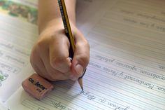 Ante las dificultades de rendimiento académico de nuestros hijos podemos optar…