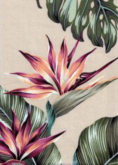 Mohala Taupe Tropical Hawaiian Tropical Hawaiian leafy, bird of paradise bark crepe upholstery fabric. Add Discount code: (Pin10) in comment box at check out for 10% off sub total at BarkclothHawaii.com