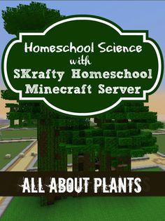 SKrafty Homeschool Minecraft Classes