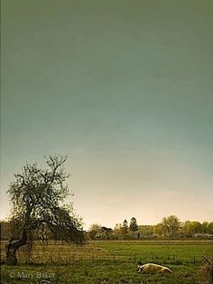 'Pig and Apple Tree' © digital image