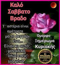 Greek Quotes, Good Night, Wish, Nighty Night, Good Night Wishes