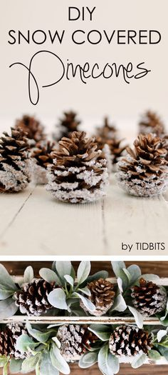 DIY Snow Covered Pinecones - a perfect project for the whole family and lovely home decor that can last all winter long.