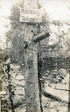 WW1. Poignant Real Photo Postcard of a Danger Zone sign on dud-pierced tree