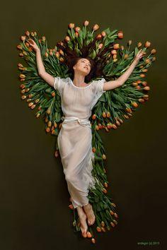 Phoenix by endegor.deviantart.com on @deviantART