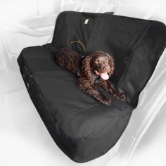 Hook and Loop Openings, Charcoal Seat Cover for Dogs -- You can get additional details at the image link.