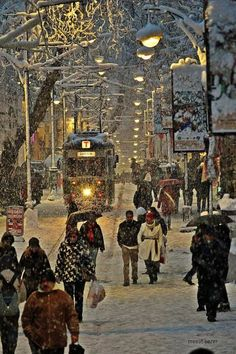 Snowy Bursa