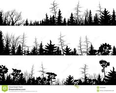 Horizontal Silhouettes Of Coniferous Wood. Royalty Free Stock ...