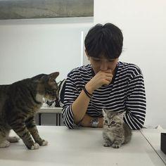 Visiting my friend's cats Korean Boys Ulzzang, Ulzzang Boy, Korean Girl, Cute Korean, Korean Men, Asian Boys, Asian Men, Pretty Boys, Cute Boys