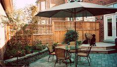small backyard space