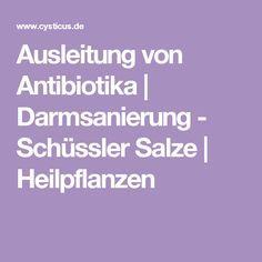 Ausleitung von Antibiotika   Darmsanierung - Schüssler Salze   Heilpflanzen