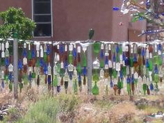 Front yard recycled bottle art