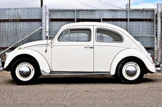 White Punch Buggy Cars