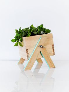 Mini Mint Planter Box