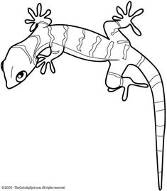 gecko lizard | Gecko | Free printable coloring pages for kids | Coloring pictures ...