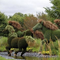 Awesome horse topiaries !!