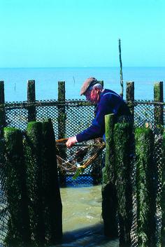 La Pêcherie