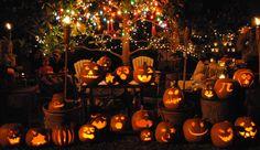 annual pumpkin carving - 2015 Pumpkin Carving, Crowns, Autumn, Fall Season, Pumpkin Carvings, Fall, Crown, Crown Royal Bags