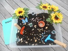 """Plants"" Sensory Tub - Potting Soil, plastic plants, plastic bugs & snakes, small garden tools & pots"