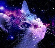 purple background - Pesquisa Google