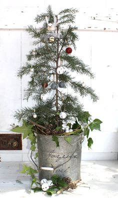 very natural tree. galvanized bucket with writing.