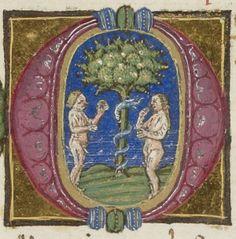 Genèse, traduit par Pietro da Napoli. Auteur : Pietro da Napoli. Traducteur Date d'édition : 1401-1500 Type : manuscrit Langue : Italien