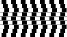 Иллюзия «Стена кафе» нимательно всмотритесь в изображение. На первый взгляд кажется, что все линии изогнуты, однако на самом деле они параллельны. Иллюзия была обнаружена Р. Грегори в кафе Wall в Бристоле. Отсюда и пошло ее название.