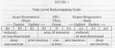 The Bodymap - A precise diagnostic tool for Psychotherapy Body Therapy, Light In The Dark, Psychology, Scale, Psicologia, Weighing Scale, Libra, Balance Sheet, Ladder