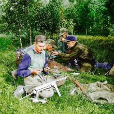 Ээрик-Нийлес Кросс: борьба лесных братьев была благородной, законной и оправданной - Мнение - Rus.Postimees.ee