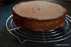 Blat umed cu ciocolata reteta clasica cu unt | Savori Urbane