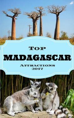 Top Madagascar Attra