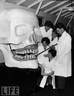 1960 - Corporal Sam Parker uses a giant model skull at the Royal Air Force's Dental Training Establishment at Halton in Buckinghamshire to instruct trainee hygienists. (via LIFE)