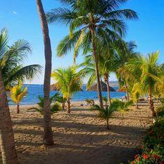 Royal Decameron Montrouis Haiti Fantasy Princess, Celebrity Cruises, Disney Fantasy, Princess Cruises, Little Island, Cruise Travel, Royal Caribbean, Humor, Romantic Travel
