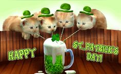 To all our Irish friends and Irish wannabe's: May the sun always be shining. May the wind always at your back. May fish & chips be plentiful and true friends to share all good times and be with you when you need them on the winding road home after celebrating St. Patrick's Day!  Susan and O'Mo and our Little Feline Leprechauns