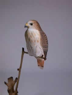 51/2 inches Redtailed Hawk Hand Carved and Hand by jjstudio