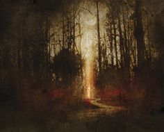 Travis Smith | Harlequin Forest. Opeth: Ghost Reveries (Special Edition) CD Interior