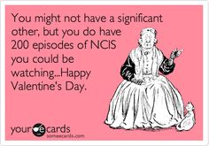 You might not have a significant other, but you do have 200 episodes of NCIS you could be watching... Happy Valentine's Day. #ecards