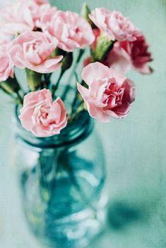 Pretty pink flowers in an aqua blue vase Pretty In Pink, Pink Flowers, Beautiful Flowers, Pink Roses, Easter Flowers, Shabby Flowers, Flower Vases, Flower Arrangements, Vase Transparent