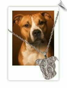 I found this company that has all kinds of memorial things you can get. Here is one example, a pendant of your beloved furbaby. You send them a photo. They will make the pendant in either 14kt yellow gold,14kt white gold or sterling silver. They also make plaques, gravestones, urns, jewelry & more for dogs, cats & even horses. Check it out : www.pets-we-love.com