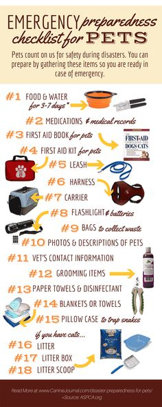 DIY: Pet Emergency Kit - A great guide on assembling an DIY dog bug out bag for your furry family member. Your pet is part of your family. But, many neglect to include their pets as part of their emergency preparedness plan. Emergency Preparedness Checklist, Emergency Binder, Emergency Preparation, Emergency Supplies, Disaster Preparedness, Survival Prepping, Emergency Kits, Survival Gear, Homestead Survival