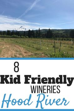 8 Kid Friendly Wineries in Hood River - Mommy Travels Beach Trip, Vacation Trips, Beach Travel, Vacations, Oregon Travel, Travel Usa, California Attractions, Us West Coast, Wine Tourism