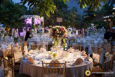 Chris philene wedding