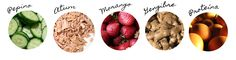 Os 5 alimentos que não podem faltar na sua dieta! | Território Animale
