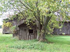 old abandon barn/shed found on a dirt road.