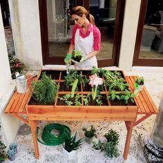 This organic garden table offers a convenient way for beginners to start an edible garden. Brookstone.com